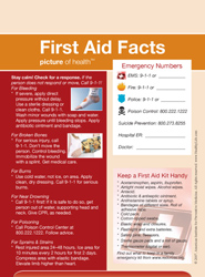 First Aid Facts Picture Frame Magnet